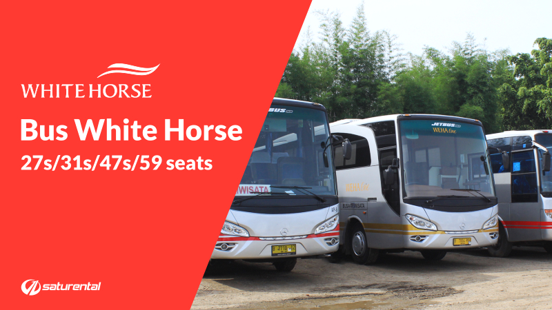 saturental - foto bus pariwisata white horse a