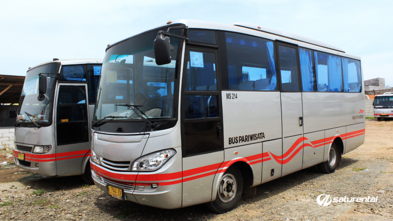 saturental - foto bus pariwisata white horse i