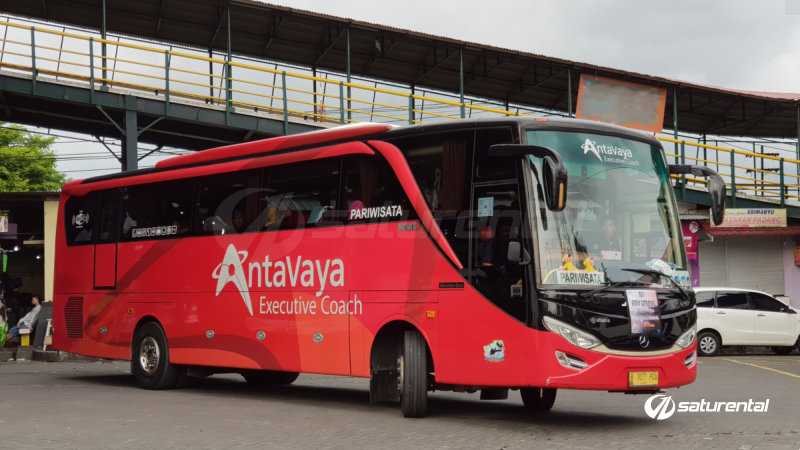 saturental - foto bus pariwisata antavaya big bus 47 59 seats c
