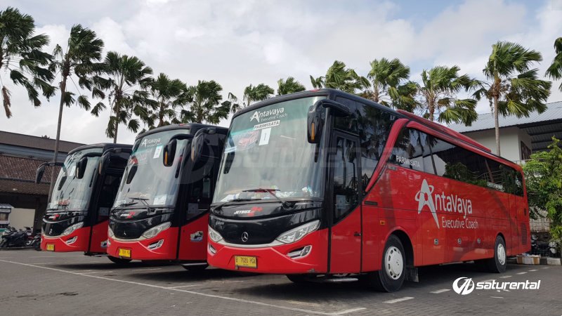 saturental - foto bus pariwisata antavaya big bus 47 59 seats e