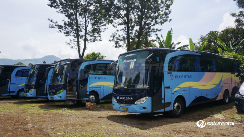 saturental - foto bus pariwisata blue star 47 59 seats a