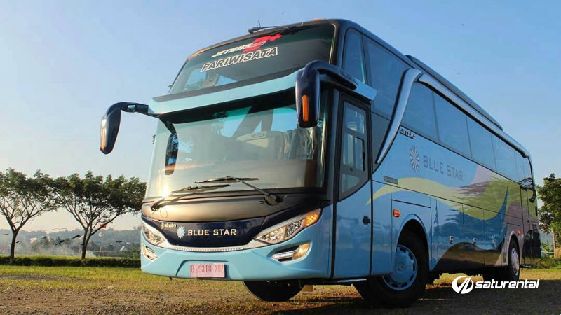 saturental - foto bus pariwisata blue star shd hdd 47 59 seats a