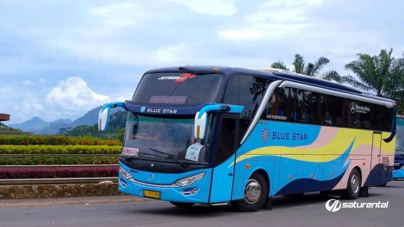 saturental - foto bus pariwisata blue star shd hdd 47 59 seats b