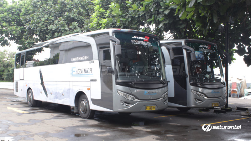 saturental - foto bus pariwisata eagle high big bus bangku 47 59 seats b