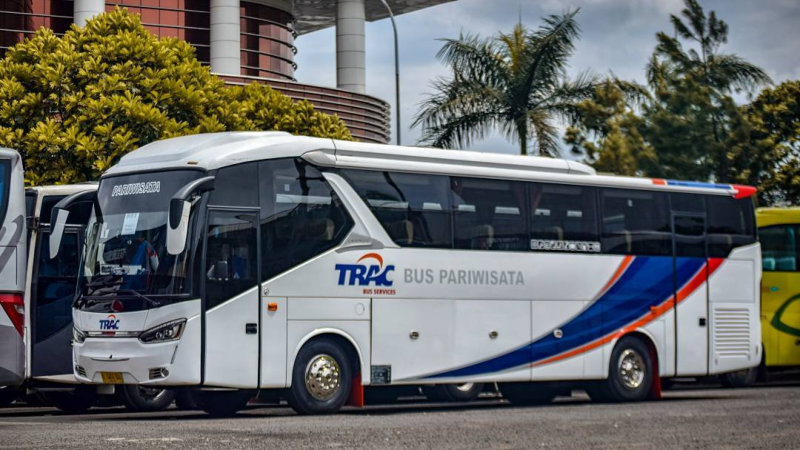 saturental - foto bus pariwisata trac big bus 38 48 59 seats a