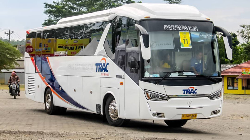 saturental - foto bus pariwisata trac big bus 38 48 59 seats b