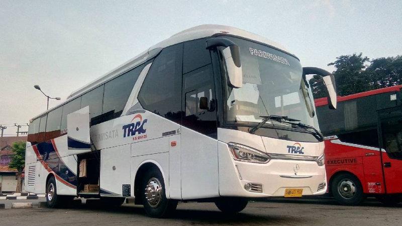 saturental - foto bus pariwisata trac big bus 38 48 59 seats c