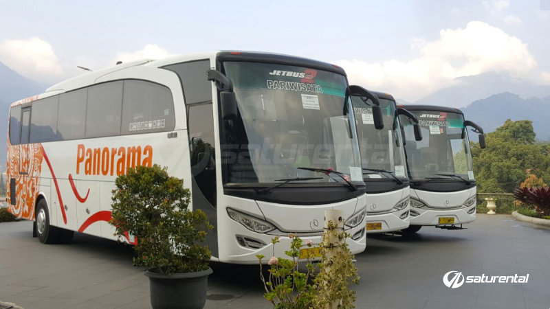 b saturental - foto bus pariwisata panorama big 47 59 seats