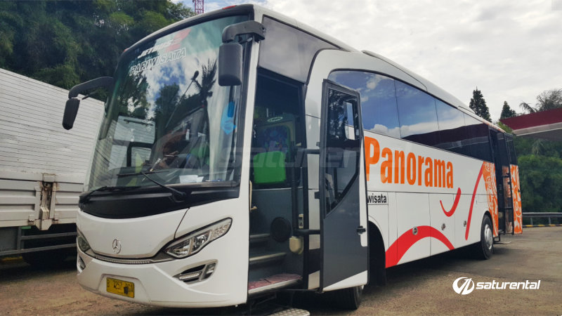 c saturental - foto bus pariwisata panorama big 47 59 seats