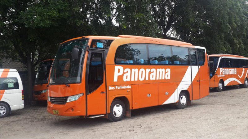 s saturental - foto bus pariwisata panorama interior dalam medium 26 31 seats