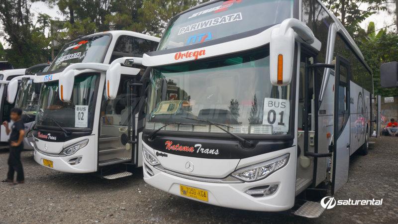 saturental - foto bus pariwisata natama trans hdd 45 59 seats a