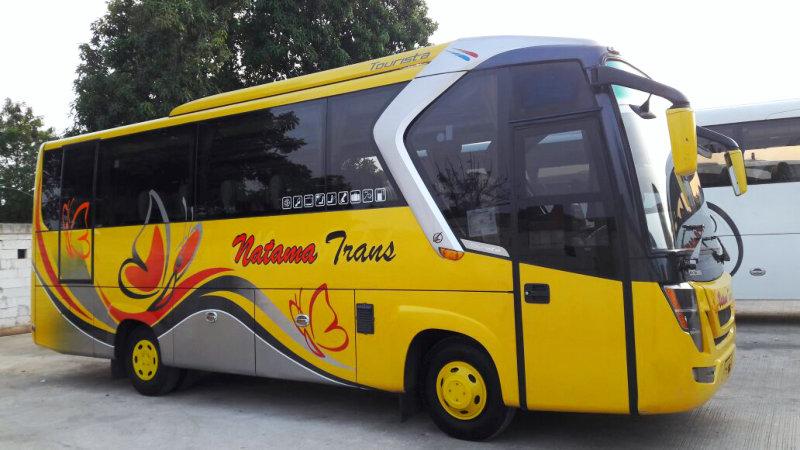 saturental - foto bus pariwisata natama trans medium 31 seats a