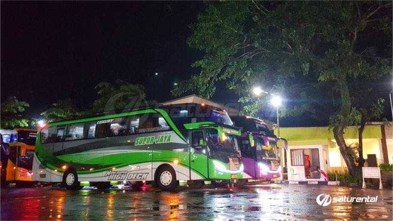 saturental - foto bus pariwisata subur jaya shd 44 59 seats c