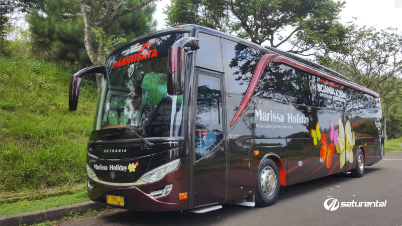saturental - foto bus pariwisata marissa holiday big bus 47 59 seats c
