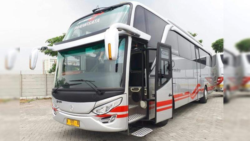 saturental - bus pariwisata white horse shd terbaru 47 59 seats a