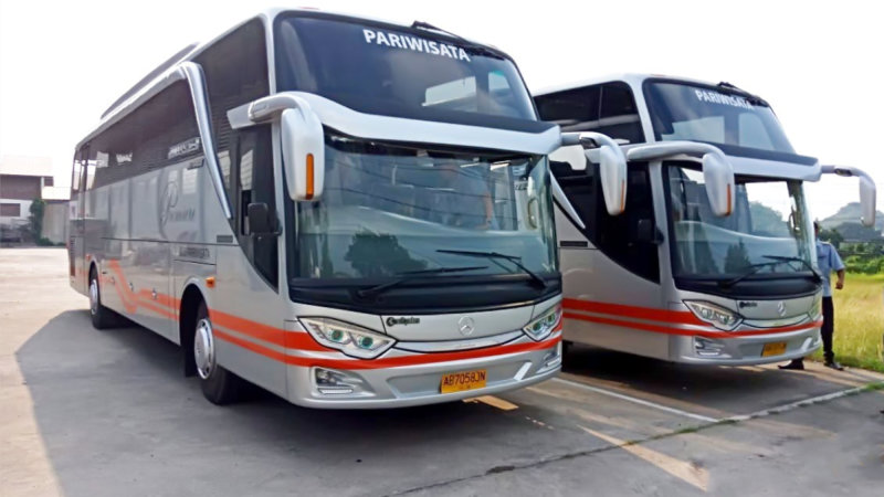 saturental - bus pariwisata white horse shd terbaru 47 59 seats b