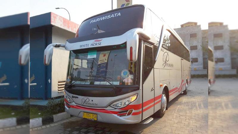 saturental - bus pariwisata white horse shd terbaru 47 59 seats c
