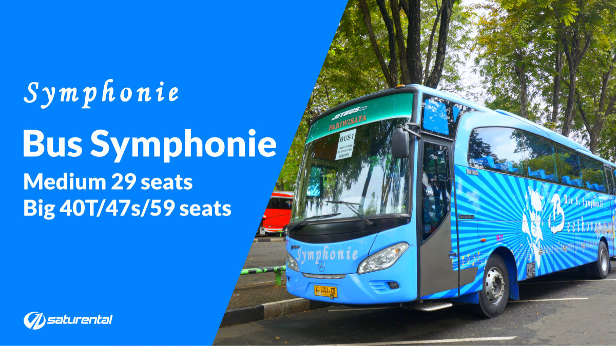 saturental - foto big bus pariwisata symphonie 47 59 seats aa