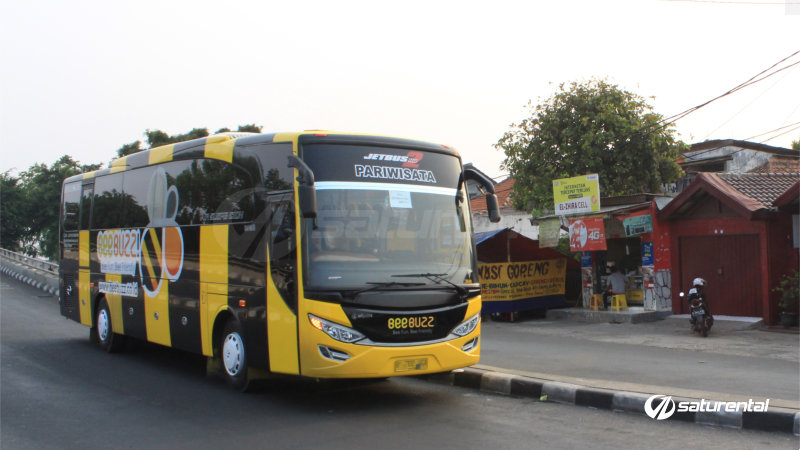 saturental - foto bus pariwisata beebuzz big bus 48 59 seats a