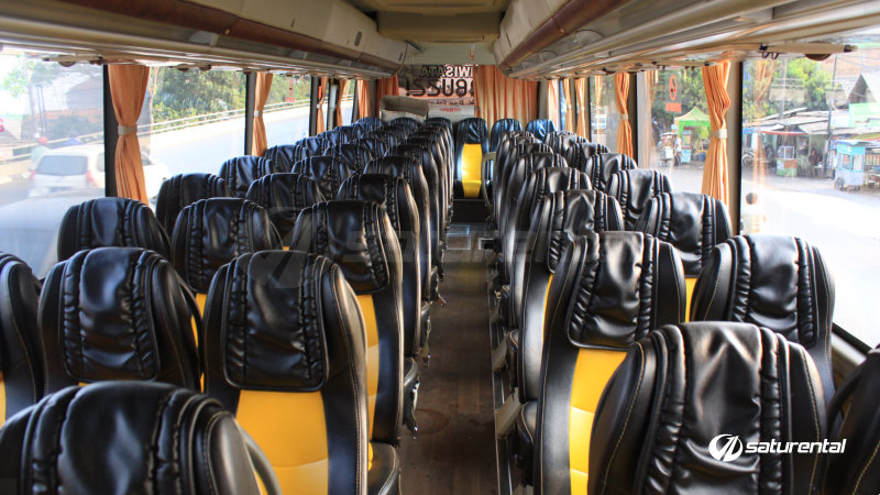 saturental - foto bus pariwisata beebuzz big bus intrior dalam 48 59 seats a