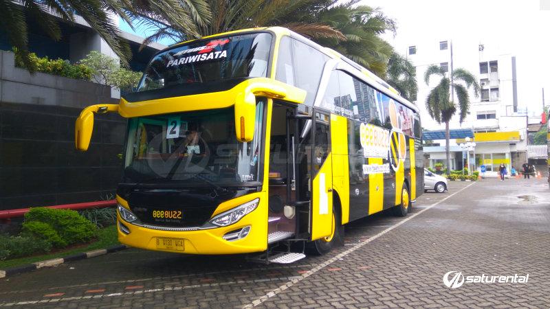 saturental - foto bus pariwisata beebuzz hdd shd terbaru 48 59 seats a