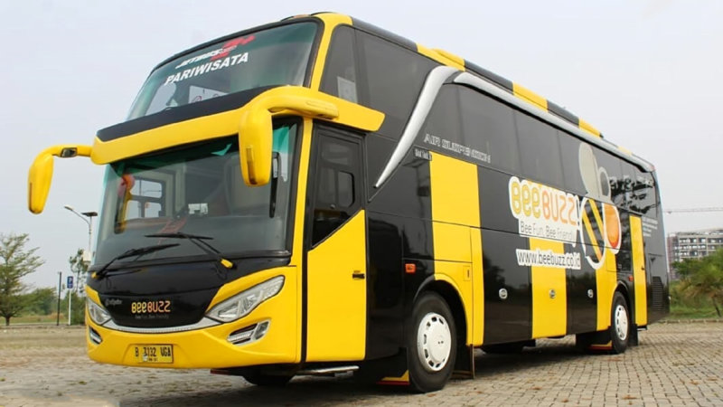 saturental - foto bus pariwisata beebuzz hdd shd terbaru 48 59 seats b