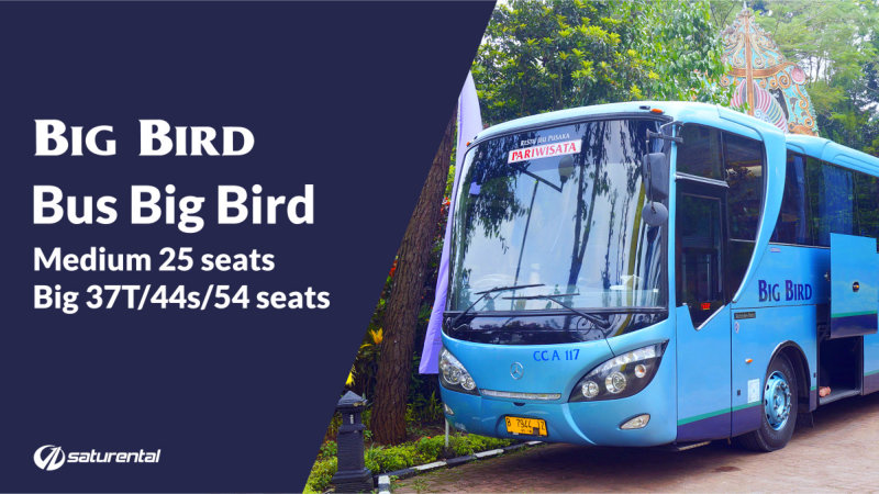 saturental - foto bus pariwisata big bird a 800