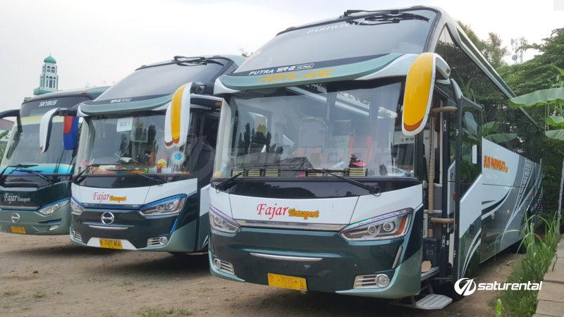 saturental - foto bus pariwisata fajar transport big bus shd 44 59 seats a