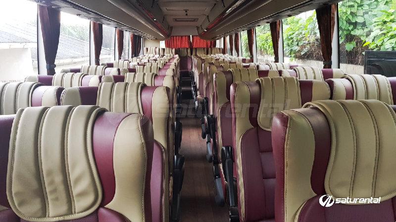 saturental - foto bus pariwisata manhattan interior dalam 47 59 seats shd terbaru a