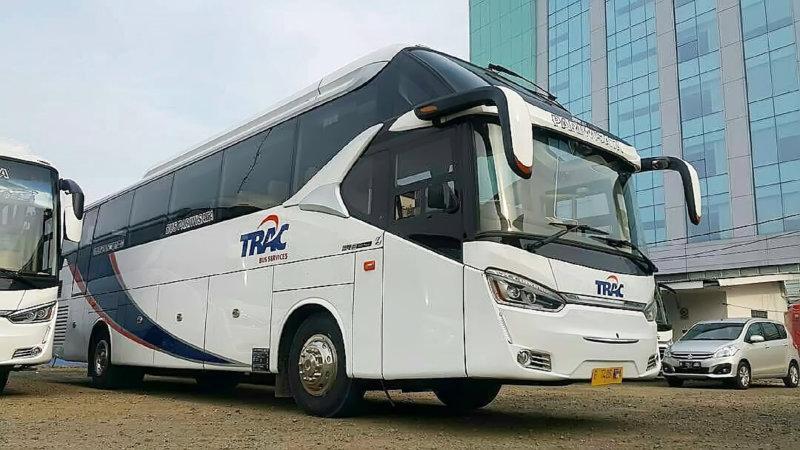saturental - foto bus pariwisata trac big bus 48 59 seats i