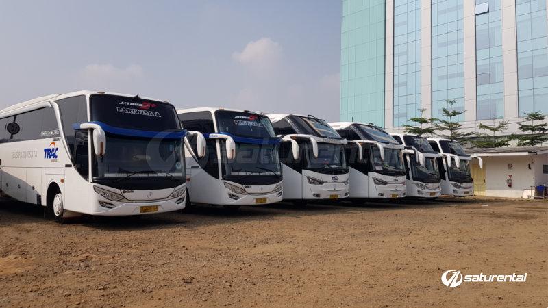 saturental - foto bus pariwisata trac shd hdd terbaru 48 59 seats a