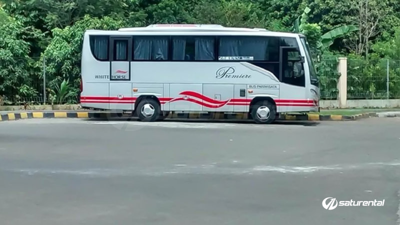 saturental - foto bus pariwisata white horse medium bus 27 31 seats e