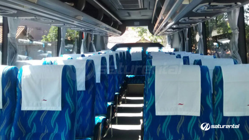 saturental - foto bus pariwisata white horse medium bus interior dalam 27 31 seats e