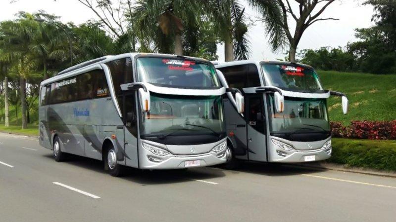 saturental - foto big bus pariwisata kerub shd hdd terbaru 43s 54s 56s 59 seats a