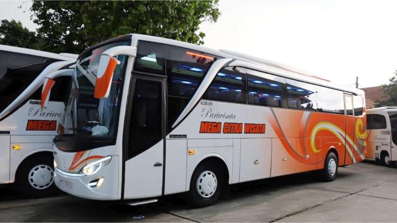saturental - foto big bus pariwisata mega citra wisata 43s 56 seats a