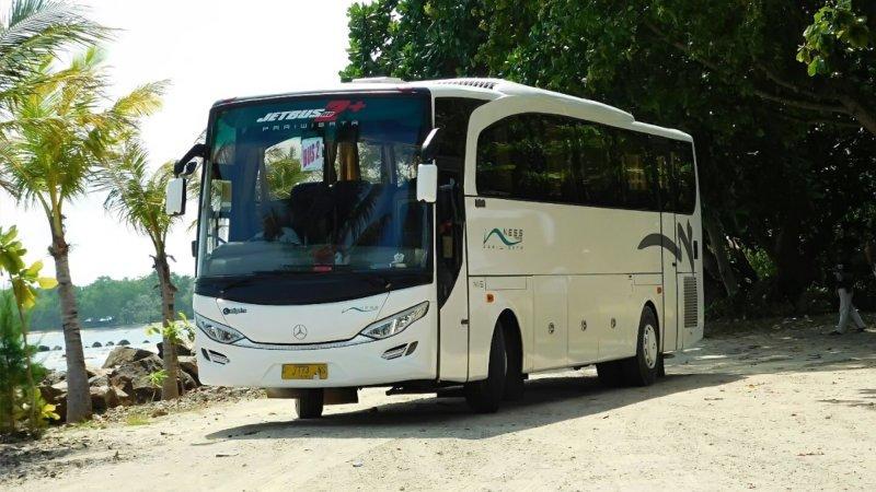 saturental - foto big bus pariwisata ness trans 47s 52s 59 seats a