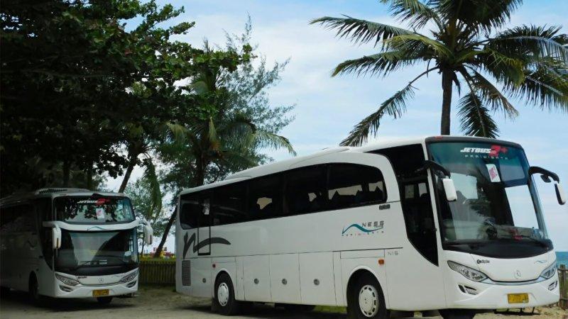 saturental - foto big bus pariwisata ness trans 47s 52s 59 seats b