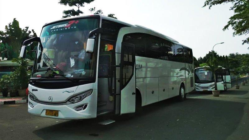 saturental - foto big bus pariwisata ness trans 47s 52s 59 seats c