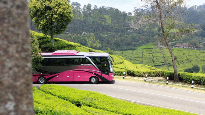 saturental - foto big bus pariwisata patriot 48s 52s 59 seat c