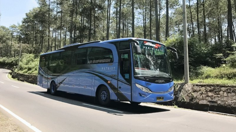 saturental - foto big bus pariwisata patriot 48s 52s 59 seat h