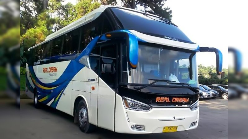 saturental - foto big bus pariwisata real dream shd hdd terbaru 59 seats a