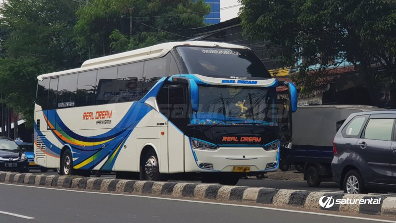 saturental - foto big bus pariwisata real dream shd hdd terbaru 59 seats c
