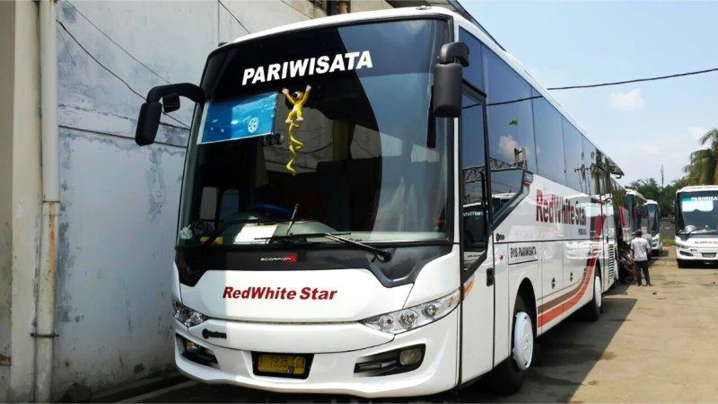 Info Lengkap Foto Harga Sewa Bus Pariwisata Red White Star Saturental