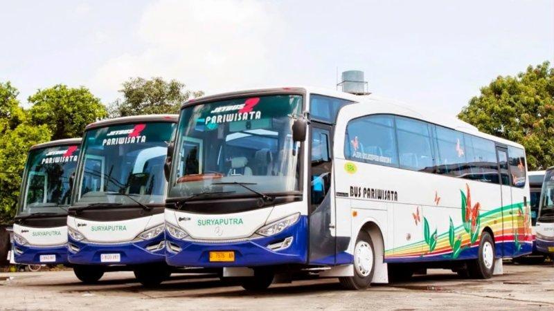 saturental - foto big bus pariwisata surya putra 45s 47s 53s 59 seats a