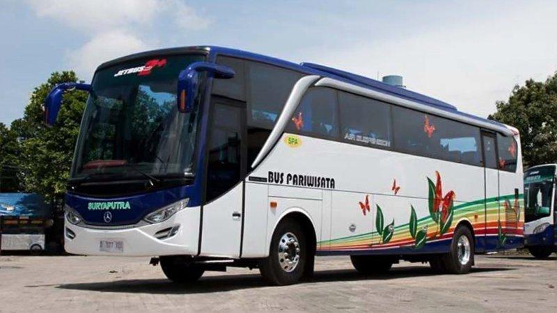 saturental - foto big bus pariwisata surya putra 45s 47s 53s 59 seats b