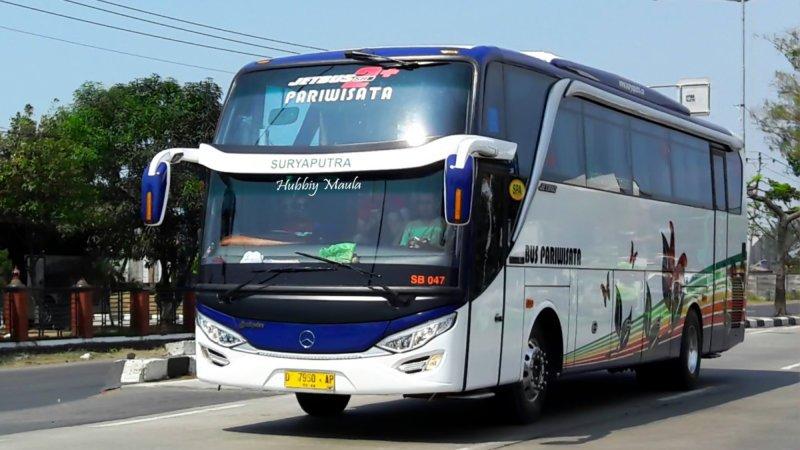 saturental - foto big bus pariwisata surya putra shd hdd terbaru 45s 47s 53s 59 seats a