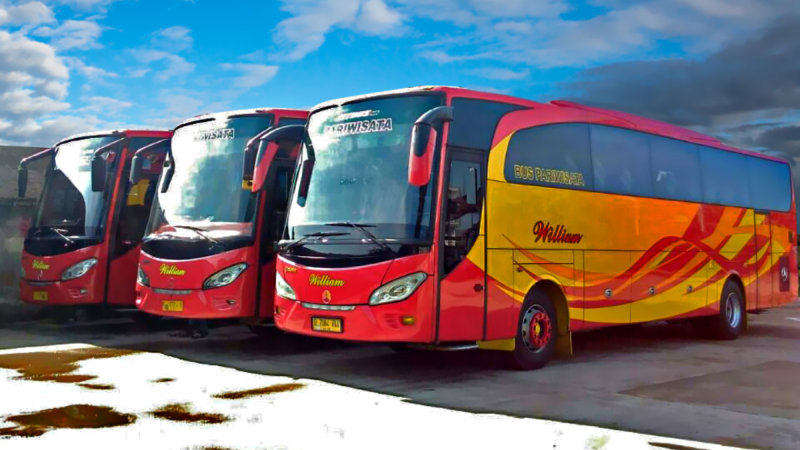 saturental - foto big bus pariwisata william 48s 59 seats a
