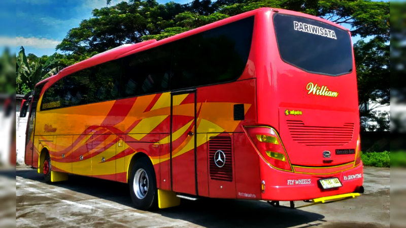 saturental - foto big bus pariwisata william 48s 59 seats b