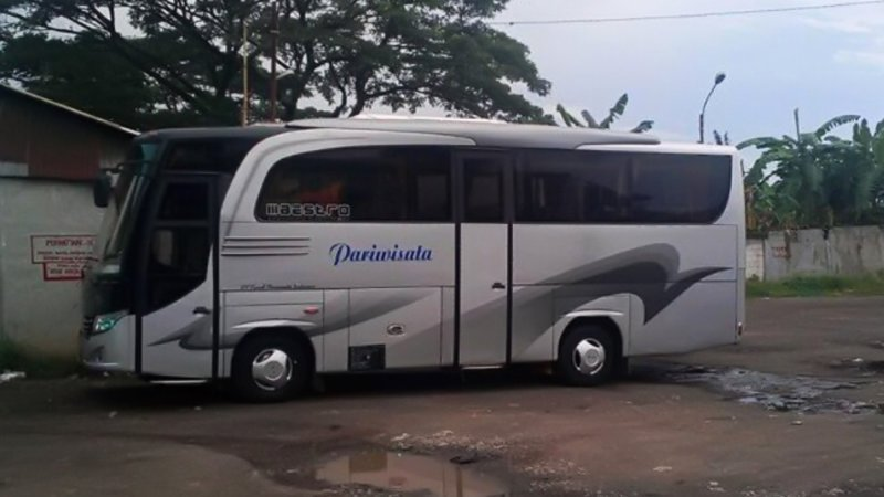 saturental - foto medium bus pariwisata kerub 25s 29s 34 seats a