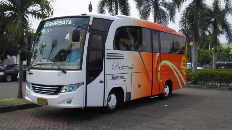 saturental - foto medium bus pariwisata mega citra wisata 25s 31 seats a